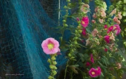 Fleurs du Jardin2